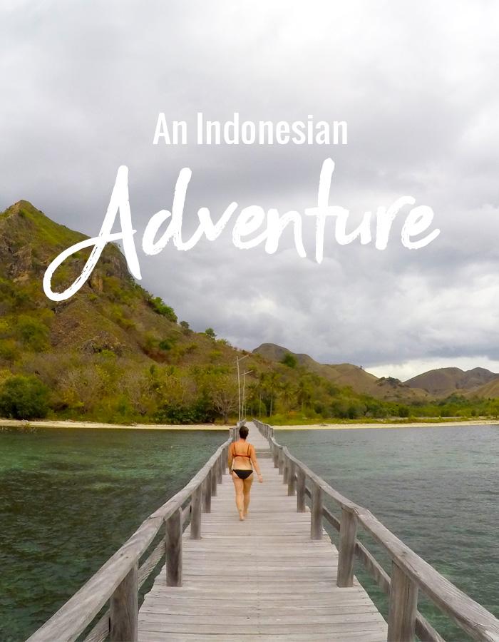 An Indonesian Adventure