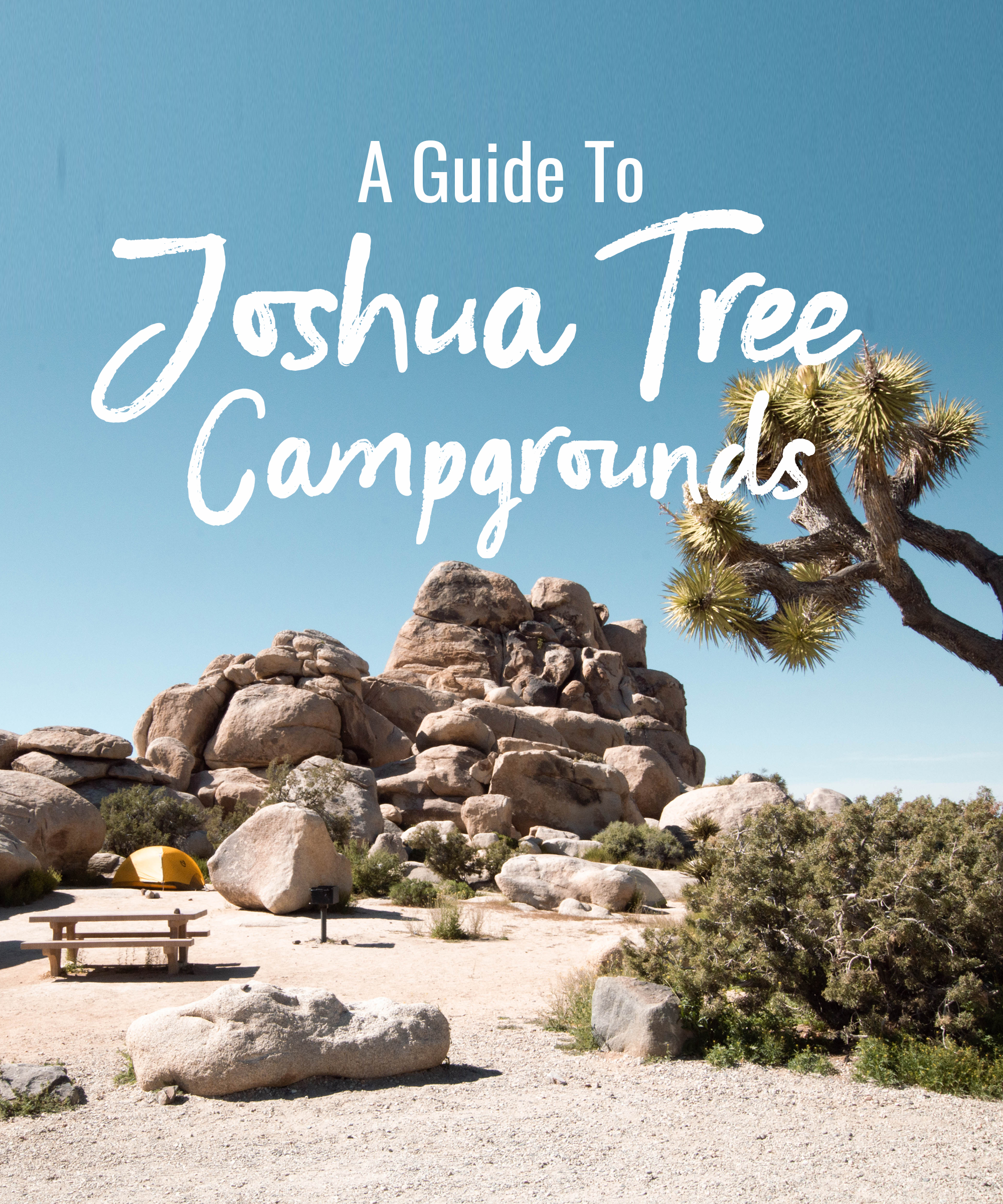 a guide to Joshua Tree campgrounds