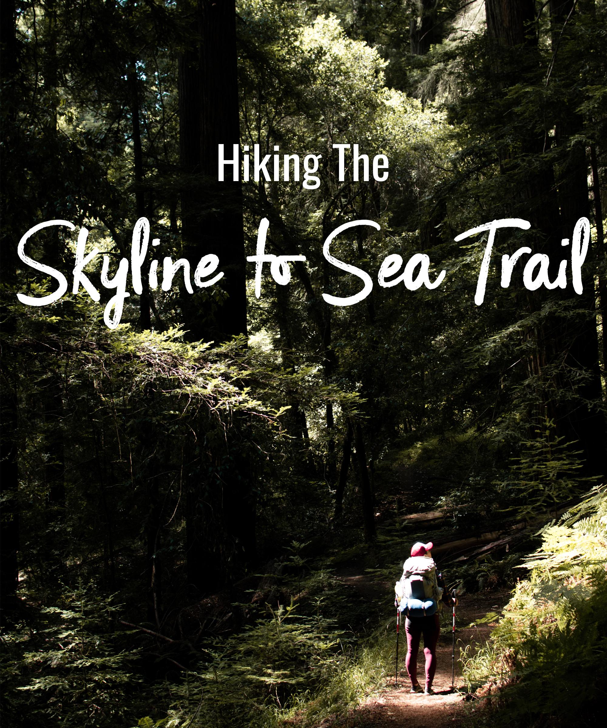 Hiking the Skyline to Sea Trail
